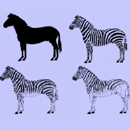 Disruptive coat patterns in zebras, John Grandage, mid 1990s