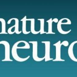 Neurons feel the force – physical interactions control brain development