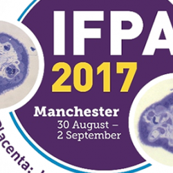 PDN members awarded prizes at IFPA 2017