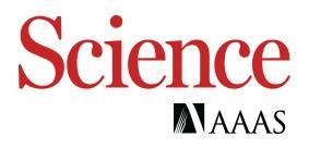 'Sleeping' stem cells could aid regenerative medicine for brain repair