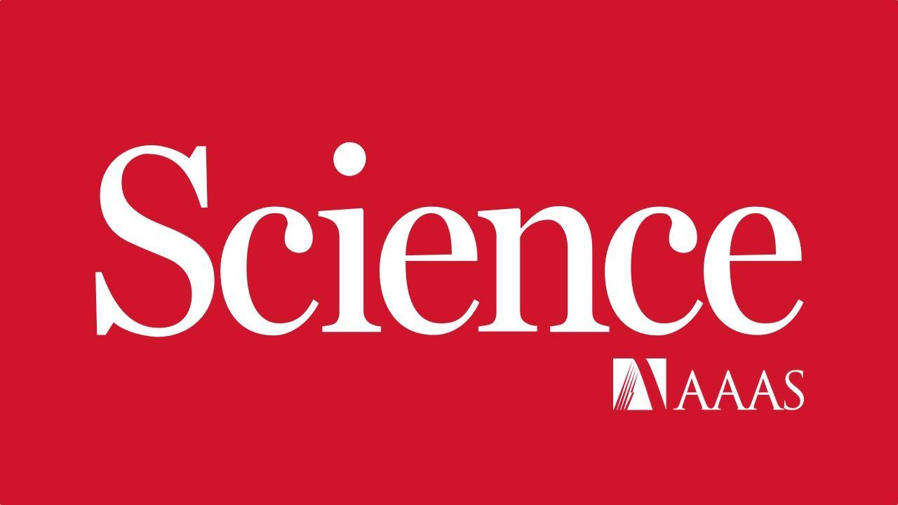 Developmental clock and mechanism of de novo polarization of the mouse embryo
