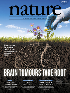 How synapse formation drives brain cancer growth