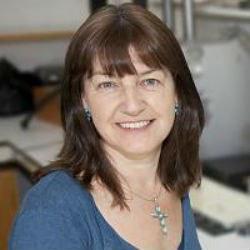 Professor Angela   Roberts