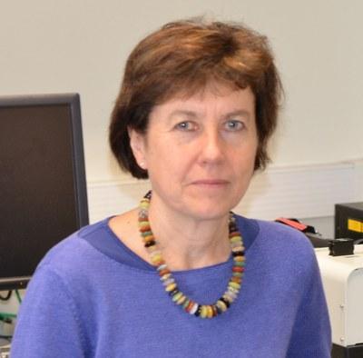 Professor Sarah  Bray